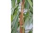 Fiksaatorlint taimedele 5m, õrnkinnitus